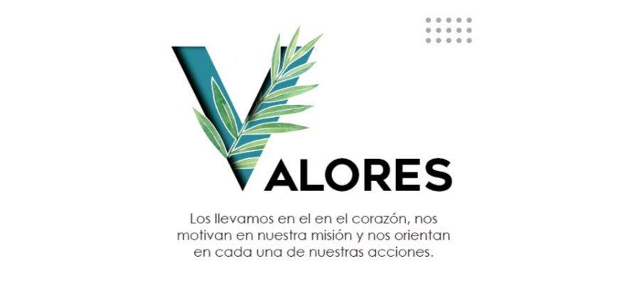 art-04Que-valores-promueve-la-iniciativa