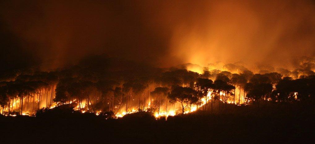 art-07-Incendio-de-la-Reserva-de-la-Biosfera-de-los-Petenes