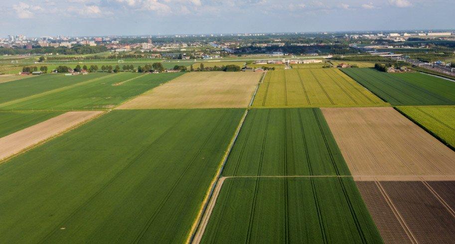 art-08-Uso-moderado-de-tierras-para-el-cultivo